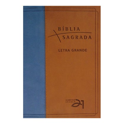 Bíblia Almeida Século 21 | A21 | Letra Grande | Capa Azul e Marrom