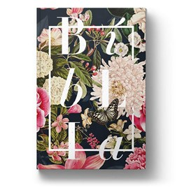Bíblia Buque Colors | NAA | Letra Normal | Capa Dura