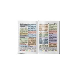 Bíblia Colorida Jovem | RC | Letra Normal | Capa Luxo Marrom