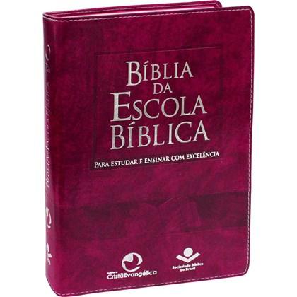 Bíblia da Escola Bíblica | Letra Normal | ARA | Capa Púrpura Nobre | c/ Índice
