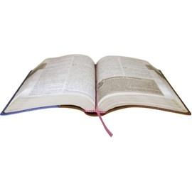 Bíblia das Descobertas Para Adolescentes | NTLH Letra Normal | Capa Couro Jeans Flores