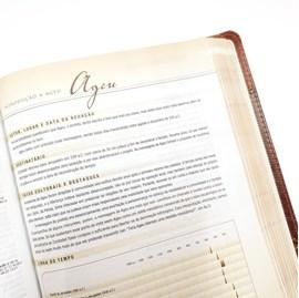 Bíblia de Estudo Arqueológica | NVI | Luxo Vinho e Cinza