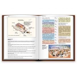 Bíblia de Estudo Colorida | Letra Grande | NVI | Capa Azul