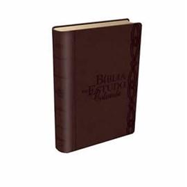 Bíblia de Estudo Colorida | Letra Grande | NVI | Vinho