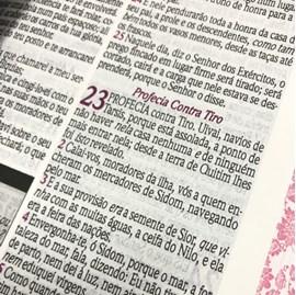 Bíblia de Estudo da Mulher Sábia | ARC | Harpa Avivada | Capa Rosa