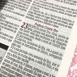 Bíblia de Estudo da Mulher Sábia | ARC | Harpa Avivada | Capa Rosas Rosa