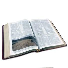 Bíblia de Estudo Holman | ARC | Capa Vinho Luxo