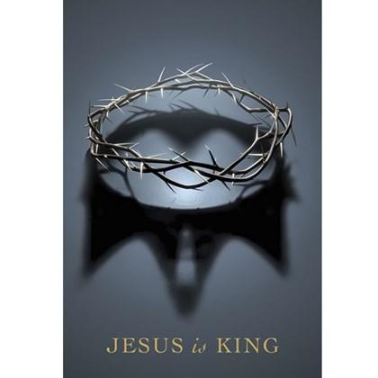 Bíblia Jesus Is King | NAA | Letra Normal | Capa Dura