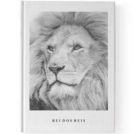 Bíblia Leão Rei dos reis   NAA   Letra Grande   Capa Dura