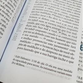 Bíblia Ministerial | NVI Letra Normal | Capa Marrom