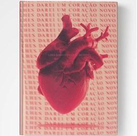 Bíblia Novo Coração | NAA | Letra Normal | Capa Dura