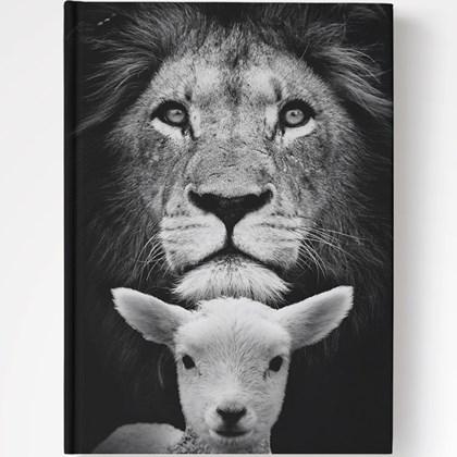 Bíblia Purificador Leão e Ovelha   NAA   Letra Normal   Capa Dura