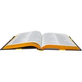 Bíblia Sagrada Amor | NAA | Capa Dura