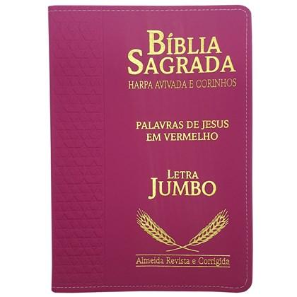Bíblia Sagrada Harpa Avivada e Corinhos   ARC   Letra Jumbo   Índice   Luxo Pink