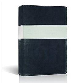 Bíblia Sagrada - Holy Bible | Português e Inglês | NVI/NIV | Azul e Branca