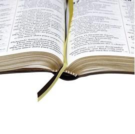 Bíblia Sagrada | Letra ExtraGigante | NTLH | Marrom Luxo | c/ Índice