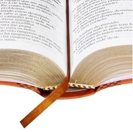 Bíblia Sagrada | Letra Gigante | NTLH | Capa Marrom Flexível | c/ Índice