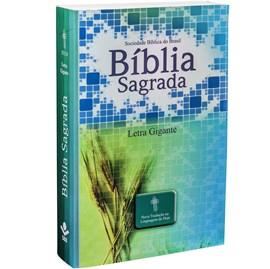 Bíblia Sagrada | Letra Grande | NTLH | Capa Ilustrada Popular