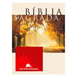Bíblia Sagrada Média   NVI   Capa Brochura