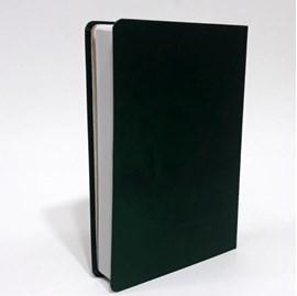 Bíblia Sagrada | NVI | Letra Grande | Capa Verde em Relevo