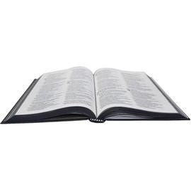 Bíblia Sagrada Palavras | NAA | Letra Normal | Capa Dura Ilustrada