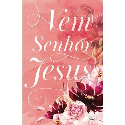 Bíblia Sagrada Vem Senhor Jesus   ARC   Letra Normal   Capa Dura