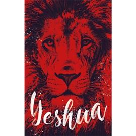 Bíblia Sagrada Yeshua | ARC | Letra Normal | Capa Dura