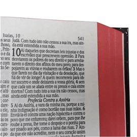 Box Evangelismo 10 Bíblias Sagrada Média Jesus | ARC | Harpa Avivada e Corinhos | Capa Dura Branca