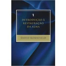 Introdução à Restauração da Alma | David Kornfield